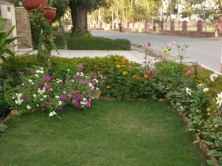 flower bed.jpg